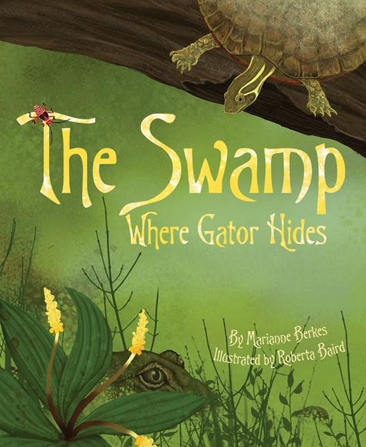 swamp_Baird
