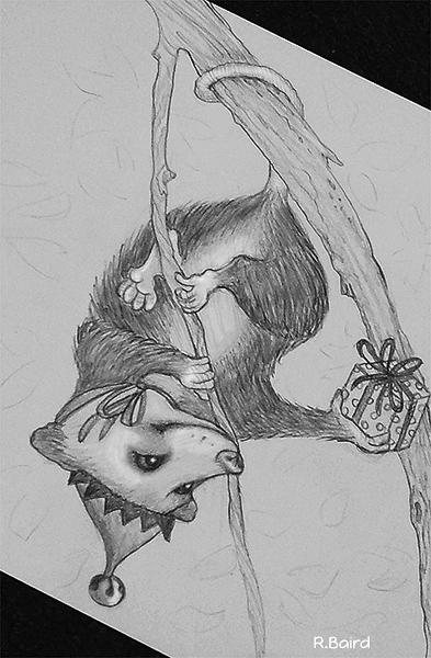santa possum72