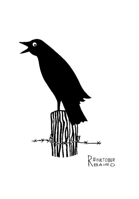 crow_ink19_rbaird